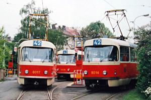 T3M 42
